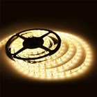 Lampu LED Strip FULLLUX -3528 Non Slycon 7