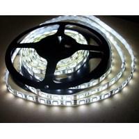 Jual Lampu LED Strip 5050 Fulllux - Non Slycon 2