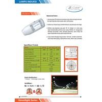Lampu Jalan PJU CLEAR ENERGY Induction LD-5 120W