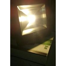 Lampu Sorot LED / Flood Light Cardilite 30 Watt