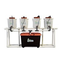Jual Taman Jirifarm Hidroponik Paket Dutchh Bucket 4 Pot Diameter 14Cm Dgn Standi 2