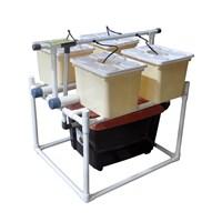 Beli Jirifarm Hidroponik Sistem Dutch Bucket 4 Pot Diameter 10 Cm (Taman) 4