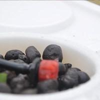 Jual Jirifarm Hidroponik Sistem Dutch Bucket 20 Pot Diameter 10 Cm (Taman) 2
