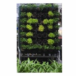 Jirifarm Vertikal Garden 49 Pot Untuk Susunan Huruf
