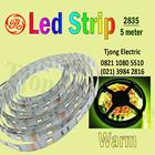 Lampu LED Strip 2835 warna Warm 1