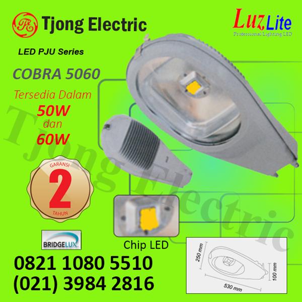 Lampu PJU LED Luzlite 60watt