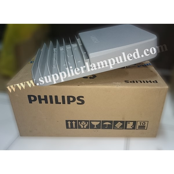 Lampu jalan PJU Philips LED BRP371-55W AC
