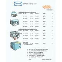 Gasoline Generator Recoil