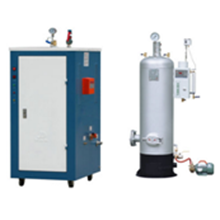 LDR Series Steam Generator - Mini (Portable) Boiler
