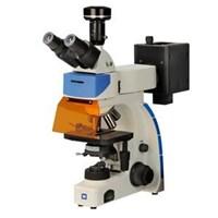 Fluorescence Microscope  1