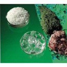 Aquakeeper Hydrogel Untuk Tanaman Cabai