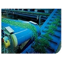 Belt Conveyor Ammeraal