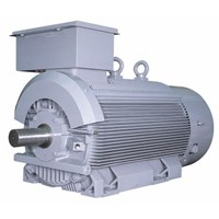 Jual Induction Motor