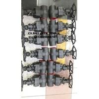 Gate Valve Astm A105 Ansi 800 Brand Evo 1