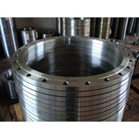 Flange Stainles  1