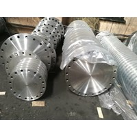 Blind Flange Stainless