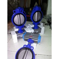 Butterfly Valve Cast Iron With Pneumatic Doble Acting