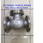 SWING CHECK VALVE EVO 1