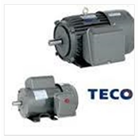 Electromotor Teco 1