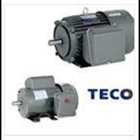 Electromotor Teco