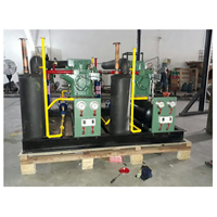 Mesin Cold Storage Multi Bitzer 1