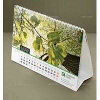 Rays Promotions Calendar Rizki