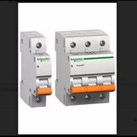 Miniature Circuit Breaker (MCB)