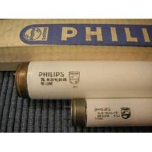 Lampu PHILIPS TL - D 15W - 54