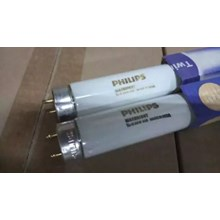 Philips Lampu TL-D 36W MaxBright 8000K 1200mm