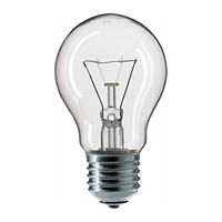 LAMPU PHILIPS CLEAR 100W E27