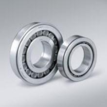 Roller Bearing NSK Cylindrical