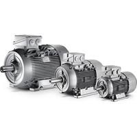 Siemens Simotics Gp General Purpose Electric Motor