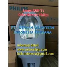 Lampu PJU Son-T 150W 250W 400W