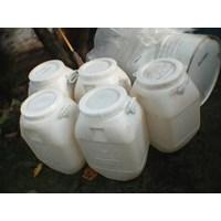 Jual Jerigen Plastik Gentong Putih 50Kg 2