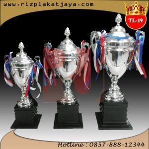 Piala Trophy Logam 19