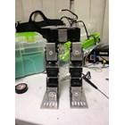 Bipedal Robot 1