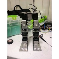 Bipedal Robots