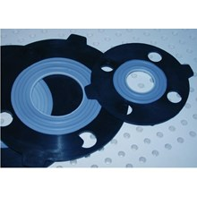 PTFE With Rubber Gasket
