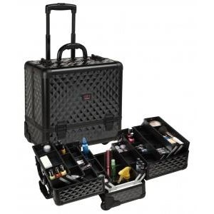 The price of Beauty Case Trolley with WB-418T Lights