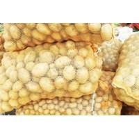 Pabrik Karung Waring Warna 46 x 72 cm Kuning Sayur di Bandung 1