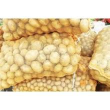 Pabrik Karung Waring Warna 46 x 72 cm Kuning Sayur di Bandung