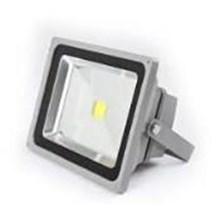 Lampu LED Flood Light RGB 30 Watt