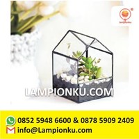 Terrarium Pot Tanaman Kaca Rangka Kuningan Surabay