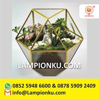 Distributor Terrarium Pot Tanaman Kaca Rangka Kuningan Surabaya  3