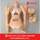 Manekin Alat Peraga APM 02 Phantom CPR-RJP Merk Hildan Safety  2