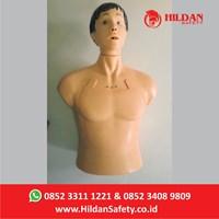 Jual Boneka Phantom Alat Peraga Kesehatan APM05 Hildan Safety Half Body CPR