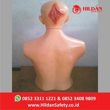 Phantom Kesehatan APM-06A Hildan Safety Kepala Belakang Rawat Luka
