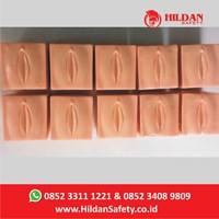 Jual Alat Peraga Hildan Safety APM 24 - Dilatasi Servic 1-10 Manikin Bidan
