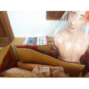 From Alat Peraga Manusia Dewasa APM 30 - Hildan Safety Full Body - Alat Peraga Kebidanan 3