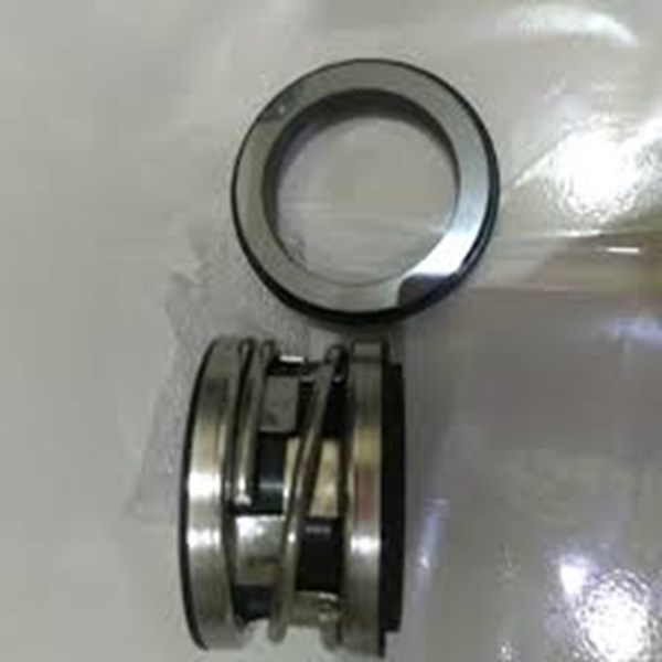 mechanical seal 2100